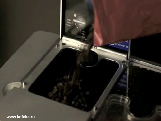 загрузка зерен кофе в jura impressa f50