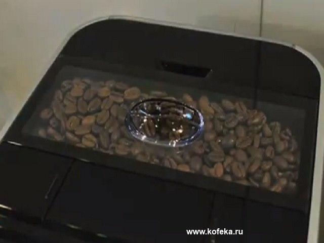контейнер для кофе в jura impressa f50